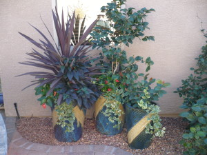 Summer Potted Garden in the Shade